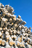 Stockpiled logs Royalty Free Stock Photo