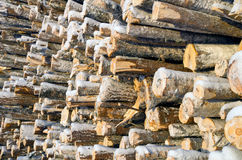 Stockpiled logs Stock Photos