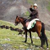 Stockrider med flocken i Alay berg på betesmark Royaltyfri Bild