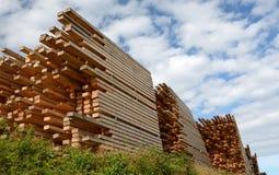 Stocks de panneaux en bois image libre de droits
