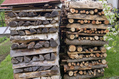 Stocks firewood ready for winter Stock Image