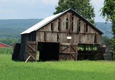 stodoła do tytoniu Fotografia Stock