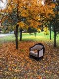 Stoel in gevallen bladeren royalty-vrije stock afbeelding