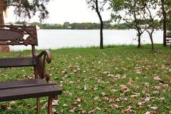 Stoel in park Royalty-vrije Stock Foto