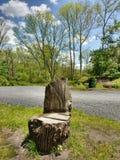 Stoel uit Natuurlijke Houten Boomboomstam die wordt gesneden Stock Afbeeldingen