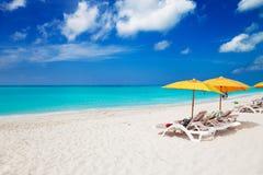 Stoelen & gele paraplu's op het Strand van de Baai van de Gunst stock afbeelding