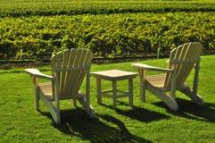Stoelen die wijngaard overzien Stock Foto