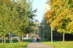 Stoep met gele bomen tijdens de herfst Royalty-vrije Stock Foto