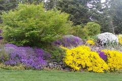 Stoff, der mit den purpurroten, gelben und weißen Blumen landschaftlich gestaltet Stockbilder