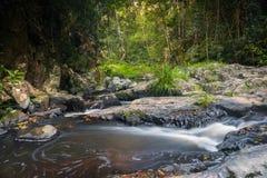 Stoff Jumrum-Nebenfluss-Regenwald Stockfoto