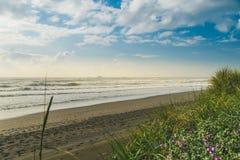 Stoff-Oregon-Küste Lizenzfreies Stockfoto