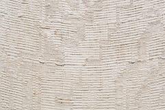 Stoffentextuur met gevoelig gestreept patroon Katoenen canvasachtergrond Stock Foto
