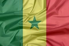Stoffenvlag van Senegal Vouw van Senegalese vlagachtergrond vector illustratie