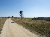 Stoffige Landweg Stock Afbeelding