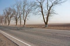 Stofstorm in de vroege lente stock afbeelding