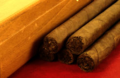 Stogies Stock Photography