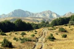 Stogovo山在马其顿 库存照片