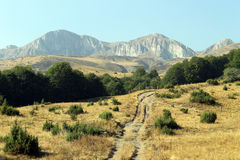 Stogovo berg i Makedonien Arkivfoton