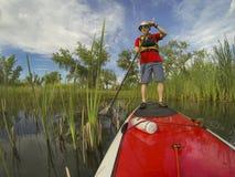 Stoi up paddling (SUP) Obrazy Stock