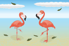Stoic flamingos Royalty Free Stock Images