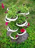 Stojak dla kwiatów powikłany kształt w parku fotografia stock