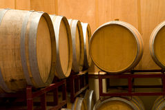 stojaka lufowy wino Zdjęcie Stock