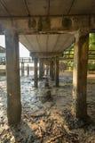 Stok op de brug Stock Fotografie
