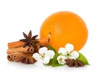 Stokkaneel, anijsplantster, takbloemen en oranje fruit Stock Foto