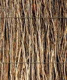 Stokken binnen een Achtergrond van de Omheining van de Borstel Stock Foto