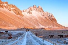 Stokksnes no por do sol no inverno, Islândia Stokksnes é um promontório na costa islandêsa do sudeste, perto de Hofn e de Hornafj fotos de stock