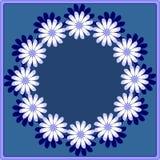 Stokrotka wianek w błękicie Obrazy Royalty Free