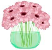 Stokrotki gerbera kwiatu bukiet w szklanej wazie Fotografia Stock