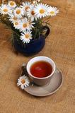 Stokrotki herbata Zdjęcia Royalty Free