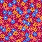 stokrotki kwiatów wzoru powtórki bezszwowy wektor Zdjęcie Stock