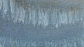 Stokvisvoorn