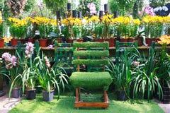 Stol i en trädgård Arkivfoton