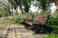 Stol i formell trädgård med blommabakgrund Royaltyfria Bilder