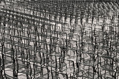 stolar Arkivbilder