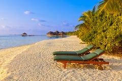 Stolar på den Maldiverna stranden Royaltyfri Fotografi