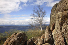 Stolby Nature Sanctuary. Sayan mountains. Russia Stock Photography