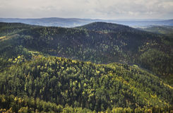 Stolby Nature Sanctuary. Sayan mountains. Russia Royalty Free Stock Photo