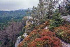 Stolowe Mountains in Poland. Autumnal colours of Mount Naroznik in Table Mountains, Sudetes in Poland Stock Photo