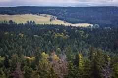 Stolowe Mountains in Poland. Forests around Table Mountains in Sudetes, view from Bird Mount near Karlow village Stock Photo