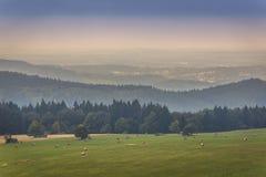 Stolowe Mountains in Poland. Lezyckie Rocks seen from Mount Naroznik in Table Mountains, Sudetes in Poland Stock Photo
