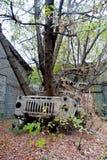 Stolpe-apokalyptiskt begrepp Träd växer från den övergav brutna rostiga lastbilen royaltyfri bild