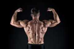 Stolt av utm?rkt form Kroppsbyggarebegrepp Sunt och starkt Macho stiligt med den muskul?sa torson Manlighet och arkivfoton