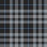 Stolthet av modellen för textur för tartan för Skottland platinakilt den sömlösa Royaltyfri Fotografi