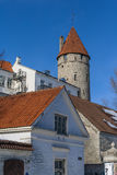 Stoltingi Tower Royalty Free Stock Photo