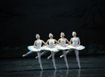 Stolz auf den kleinen See Swan Tanzballett des Schwans vier Stockbilder