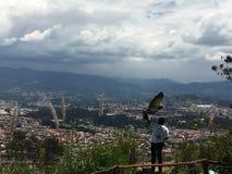 Stolzer goldener Eagle Spreads Wings im Flug, ³ Amaru Zoolà gico Bioparque Stockfotografie